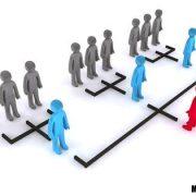 ساختار سازمانی نت